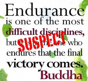 endurance-is-one-of-the-most-difficult-disciplines-300x277