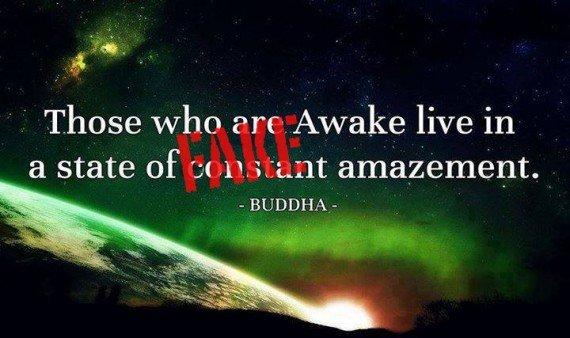 those-who-are-awake-570x338