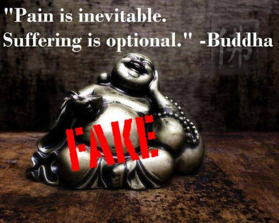 quotpain is inevitable suffering is optionalquot fake buddha