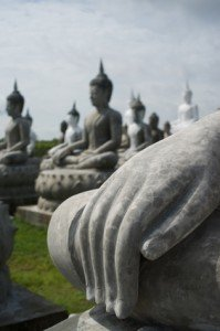 More Buddhas than you can shake a stick at.