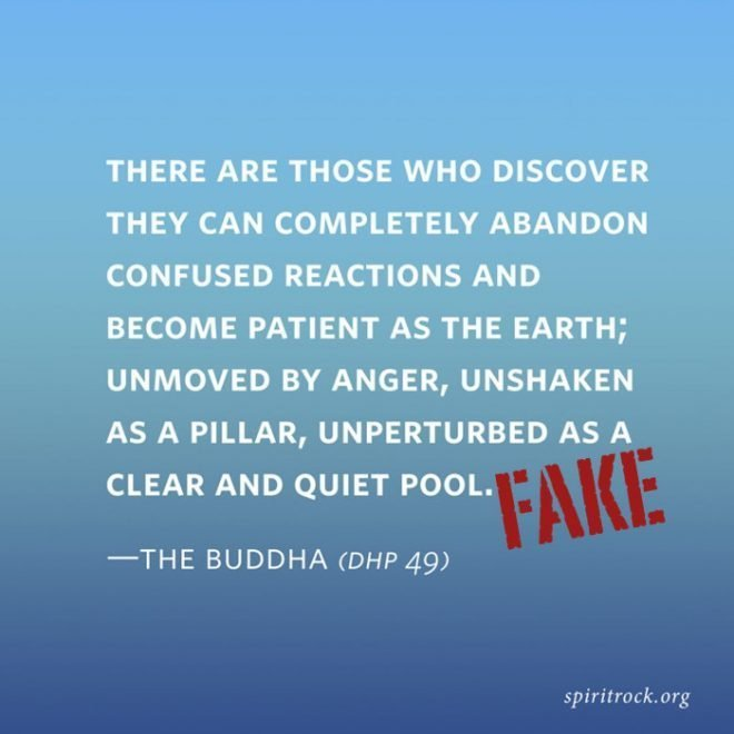 Askir Karte.Fake Buddha Quotes I Can T Believe It S Not Buddha